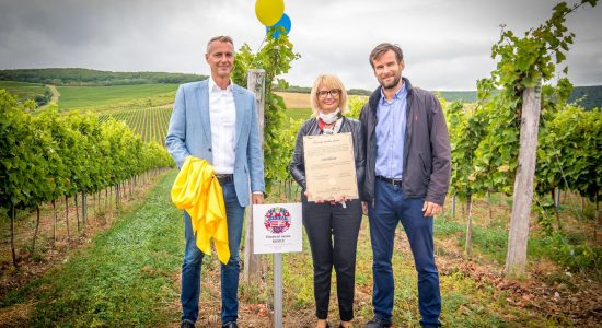 Handing over the vineyard to the city of Košice and blessing the CASSAVITA vineyards