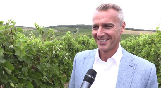 Košice majú vlastné víno CASSAVITA
