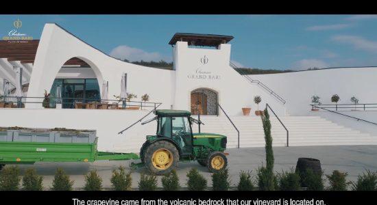 Jak rodzi się wino Chateau GRAND BARI